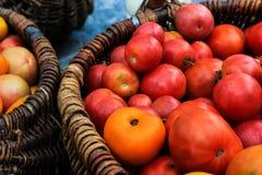 Tomates dans le panier Photos stock