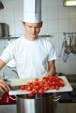 Tomates dans un bac image libre de droits