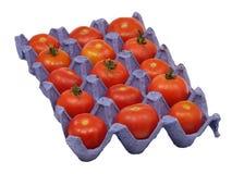 Tomates dans un bac. Photos libres de droits