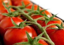 Tomates dans une boîte sur une fin blanche de fond  image libre de droits
