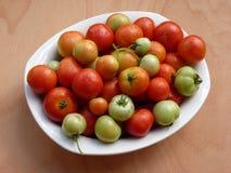 Tomates dans une cuvette Photos stock
