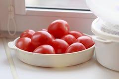 Tomates dans une cuvette blanche Image libre de droits