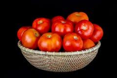 Tomates dans une cuvette de rotin sur un fond noir Images libres de droits