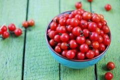 Tomates dans une cuvette de turquoise Photos stock