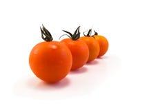 Tomates dans une ligne Photo stock