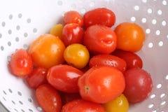 Tomates de bonbon à jardin images libres de droits