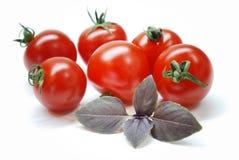 Tomates de cereja Imagem de Stock