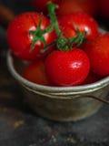 Tomates de cereja com gotas da água Imagens de Stock