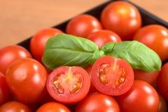 Tomates de cereja com manjericão Imagens de Stock Royalty Free
