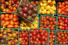 Tomates de cereja da cesta Fotografia de Stock