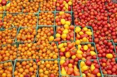 Tomates de cereja da cesta Imagens de Stock