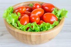Tomates de cereja e ervas frescas Imagem de Stock Royalty Free