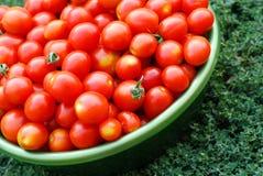 Tomates de cereja ecológicos em uma bacia Foto de Stock