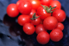 Tomates de cereja escolhidos frescos imagens de stock