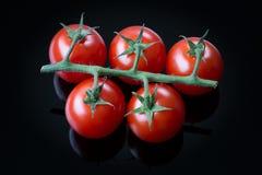 Tomates de cereja frescos em um fundo preto Fotografia de Stock