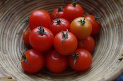 Tomates de cereja frescos na cesta Imagem de Stock