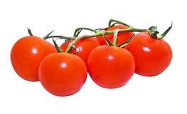 Tomates de cereja isolados Fotografia de Stock Royalty Free