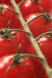 Tomates de cereja macro Imagem de Stock