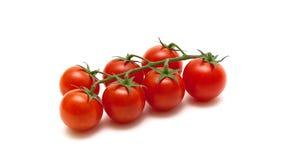 Tomates de cereja maduros isolados no fundo branco imagens de stock royalty free