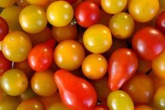 Tomates de cereja misturados imagem de stock