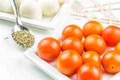 Tomates de cereja, mozarella e manjericão da terra Imagens de Stock