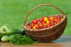 Tomates de cereja na cesta e no outro vegetal. Imagem de Stock