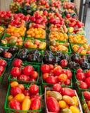 Tomates de cereja na exposição Imagem de Stock Royalty Free