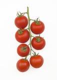 Tomates de cereja na videira Fotografia de Stock Royalty Free