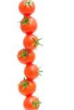 Tomates de cereja nas gotas da água em um fundo branco Fotografia de Stock