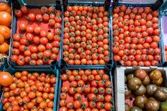 Tomates de cereja no mercado, vista superior Imagem de Stock Royalty Free