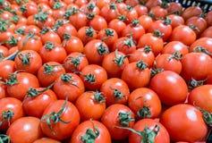 Tomates de cereja no mercado, vista superior Imagens de Stock