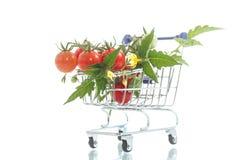 Tomates de cereja orgânicos Fotos de Stock Royalty Free