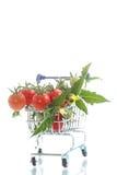 Tomates de cereja orgânicos Fotos de Stock
