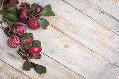 Tomates de cereja orgânicos com alecrins na tabela de madeira rústica Imagem de Stock Royalty Free