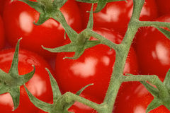 Tomates de cereja orgânicos suculentos imagem de stock royalty free