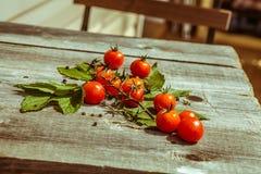 Tomates de cereja pequenos na tabela de madeira Fotos de Stock Royalty Free