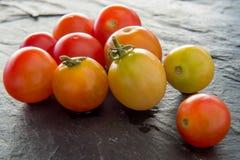 Tomates de cereja tailandeses Fotografia de Stock