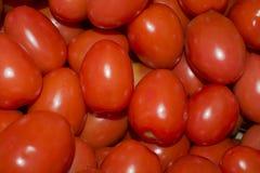 Tomates de cereja vermelhos Fotografia de Stock