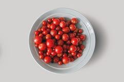 Tomates de cereja vermelhos maduros frescos em uma placa branca, colheita cultivado em casa do outono - fundo - trajeto de grampe Fotos de Stock Royalty Free