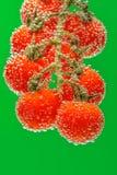 Tomates de cereja vermelhos maduros imagem de stock