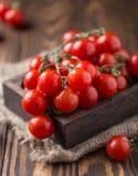 Tomates de cereja vermelhos pequenos no fundo rústico Tomates de cereja na videira Imagens de Stock