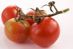 Tomates de cereza Fotografía de archivo libre de regalías
