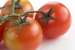 Tomates de cereza Fotos de archivo libres de regalías