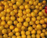 Tomates de cereza amarillos Foto de archivo libre de regalías