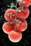 Tomates de cereza cubiertos por las burbujas en el fondo negro Foto de archivo