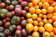 Tomates de cereza de la herencia para la venta en el mercado del granjero en verano Imagen de archivo