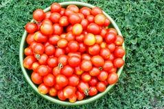 Tomates de cereza ecológicos en un lavabo Foto de archivo libre de regalías