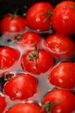 Tomates de cereza en el agua 2 Imágenes de archivo libres de regalías