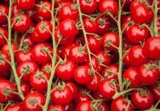 Tomates de cereza en el mercado en París. Fotografía de archivo libre de regalías