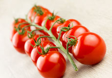Tomates de cereza en la vid Fotos de archivo
